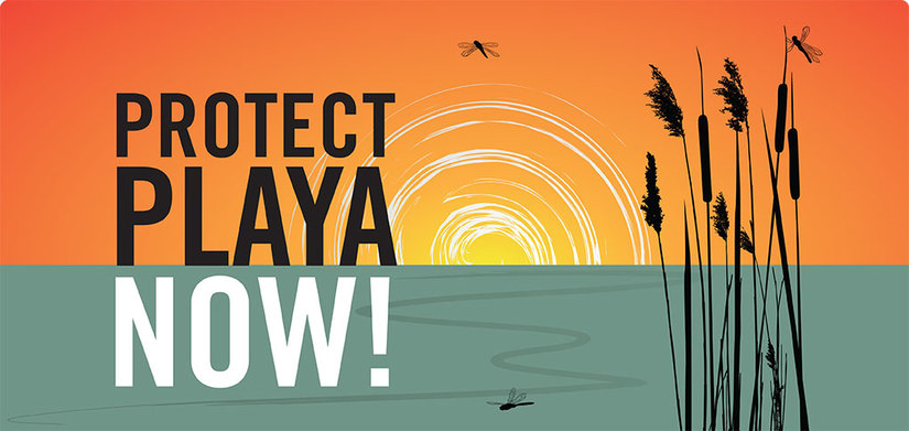 Protect Playa Now